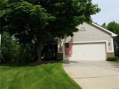 Novi Condo/Townhouse For Sale: 31216 Columbia Drive #33