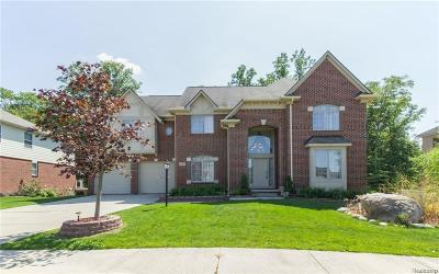 Novi Single Family Home For Sale: 41715 Steinbeck Glenn