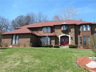 Troy Single Family Home For Sale: 6477 Shagbark Drive