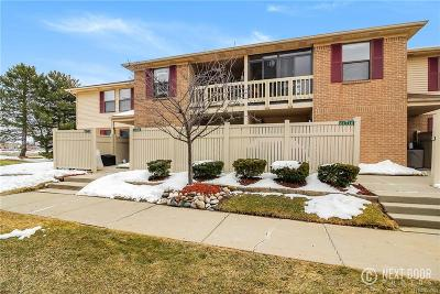 South Lyon Condo/Townhouse For Sale: 61118 Greenwood Drive