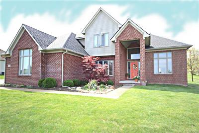 Clarkston, Independence Twp, Springfield Twp, Village Of Clarkston  Single Family Home For Sale: 4882 Menominee Lane