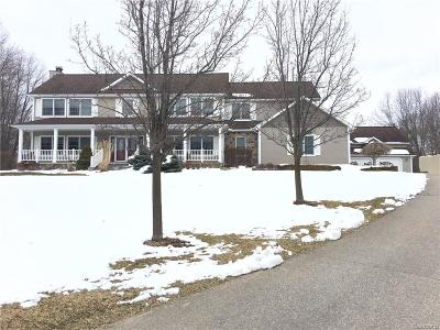 Addison Twp Single Family Home For Sale: 2716 Lake George Road