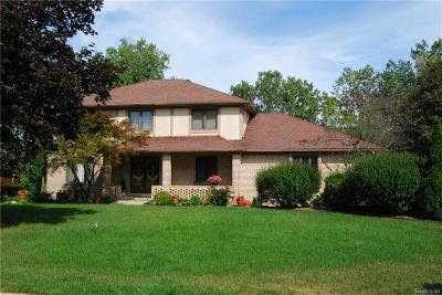Farmington Hills Single Family Home For Sale: 22056 Heatheridge Lane