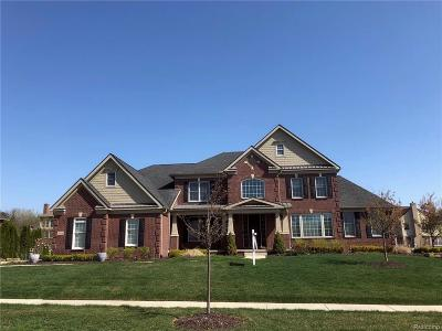 Northville Single Family Home For Sale: 50826 Northstar Way