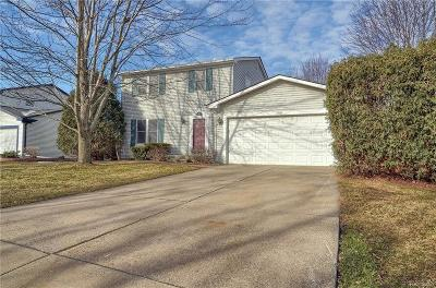 Rochester Hills, Rochester Single Family Home For Sale: 788 Dressler Lane