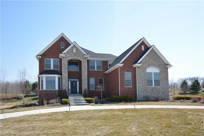 Lyon Twp Single Family Home For Sale: 24384 Ravine Drive