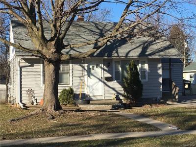 Romeo Vlg, Bruce Twp, Washington Twp Single Family Home For Sale: 213 Ewell
