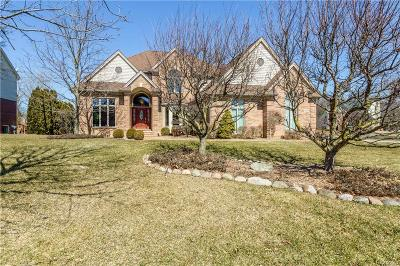 Plymouth Twp Single Family Home For Sale: 46522 Southview Lane
