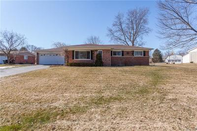 Shelby Twp Single Family Home For Sale: 53383 Starlite Drive