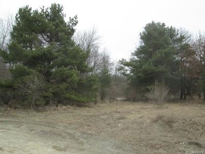 Hartland Twp Residential Lots & Land Sold: Jeni Lane