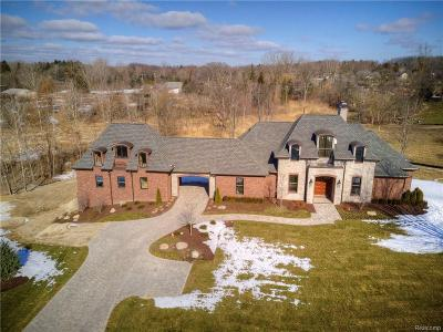 Salem Twp MI Single Family Home For Sale: $1,300,000