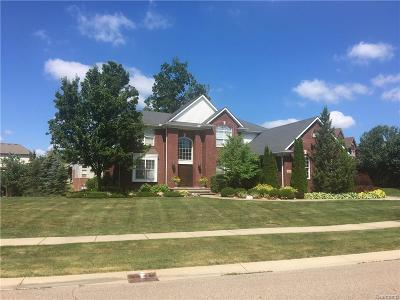 Rochester Hills, Rochester Single Family Home For Sale: 3178 Grand Park