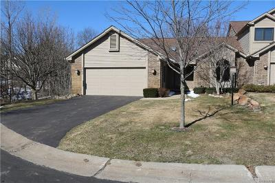 Clarkston, Independence Twp, Springfield Twp, Village Of Clarkston  Condo/Townhouse For Sale: 5725 Leeward Court #47