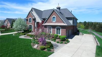Northville Single Family Home For Sale: 47924 Manorwood