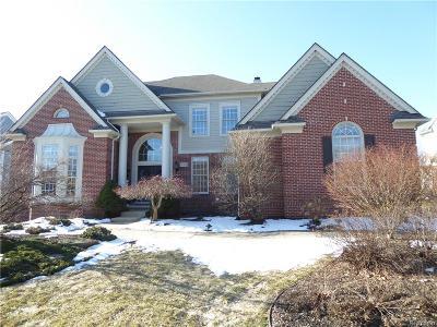 Novi Single Family Home For Sale: 47255 Sunnybrook Lane