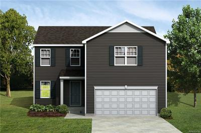 New Haven Vlg MI Single Family Home For Sale: $190,220