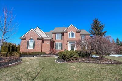 Novi MI Single Family Home For Sale: $625,000