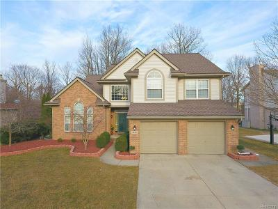 Canton, Canton Twp Single Family Home For Sale: 2140 Hendrie