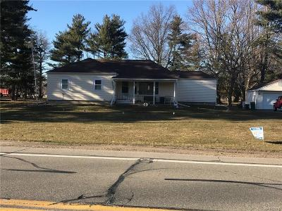 Huron Twp Single Family Home For Sale: 34970 Huron River Drive