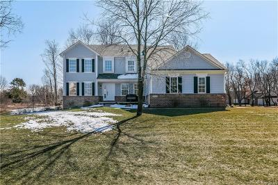 Clarkston, Independence Twp, Springfield Twp, Village Of Clarkston  Single Family Home For Sale: 6720 Forest Point