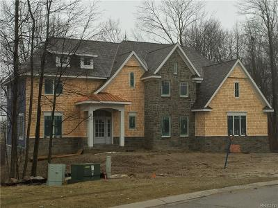 Clarkston, Independence Twp, Springfield Twp, Village Of Clarkston  Single Family Home For Sale: 7525 Maple Ridge Drive