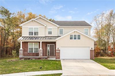 Lyon Twp Single Family Home For Sale: 4784 Morrissey Lane