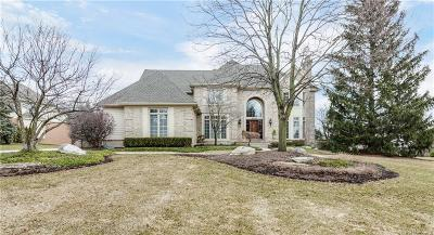 Oakland Twp Single Family Home For Sale: 5849 Kings Pointe Drive