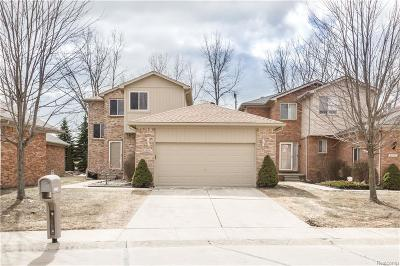 Chesterfield Twp Condo/Townhouse For Sale: 32908 Birchwood Drive