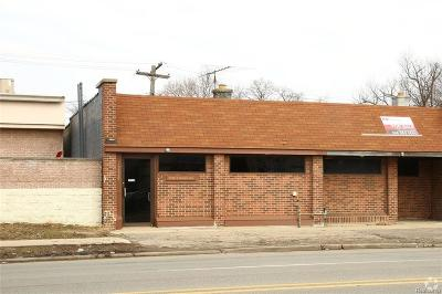 Commercial For Sale: 19228 W McNichols Road