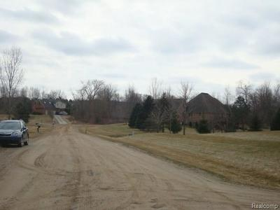 Addison Twp Residential Lots & Land For Sale: Donna Mae