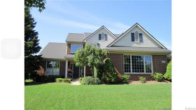 Novi Single Family Home For Sale: 31201 Kingswood Boulevard