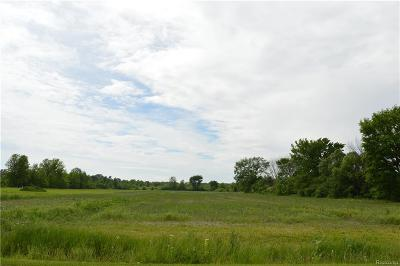 China Twp MI Residential Lots & Land For Sale: $145,000