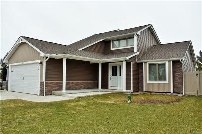 White Lake Single Family Home For Sale: 11273 Lakehaven Drive