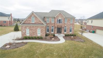 Novi Single Family Home For Sale: 24801 Mallard Trail Lane
