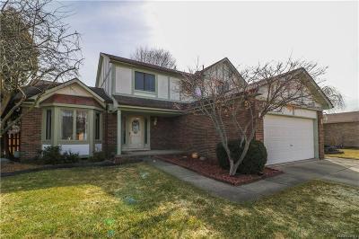 Clinton Twp Single Family Home For Sale: 20782 Marlinga Drive