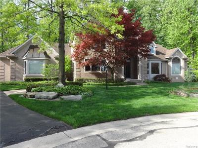 Rochester Hills Single Family Home For Sale: 3740 Walnut Brook Drive