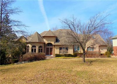 West Bloomfield Twp Single Family Home For Sale: 6558 Bridgewater Drive