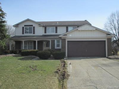 Troy Single Family Home For Sale: 1059 Fountain Drive