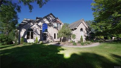 Waterford Single Family Home For Sale: 3124 Pine Tree Court