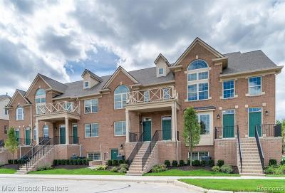 Northville Condo/Townhouse For Sale: 39667 Springwater Drive