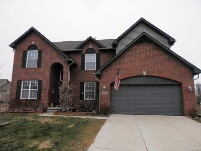 Brownstown, Brownstown Twp Single Family Home For Sale: 33997 Brownswood Boulevard