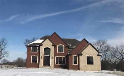 Lyon Twp Single Family Home For Sale: 52258 Trailwood Drive