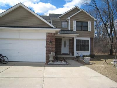 Farmington Hills Single Family Home For Sale: 33594 Harlowshire Street