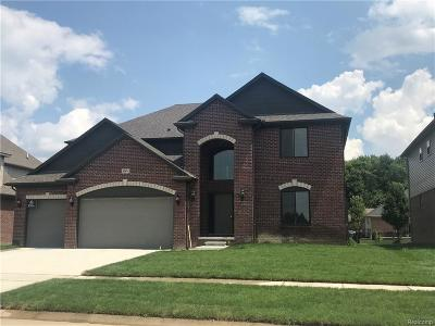 Macomb Twp Single Family Home For Sale: 45674 Torch Lake Drive