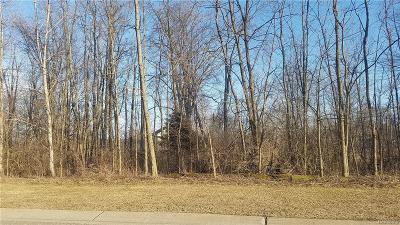 Commerce Twp Residential Lots & Land For Sale: Lot 41 Thorncrest Drive