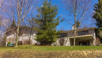 Oakland Twp Single Family Home For Sale: 4840 Freer Street