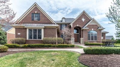 Northville Twp Single Family Home For Sale: 18600 Marble Head Drive