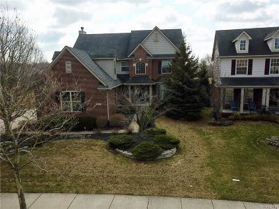 Brownstown Twp, Flat Rock Single Family Home For Sale: 28203 Aspen Boulevard