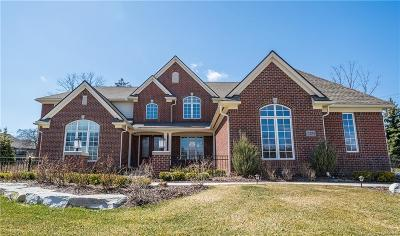 West Bloomfield, West Bloomfield Twp Single Family Home For Sale: 3220 Legacy Court