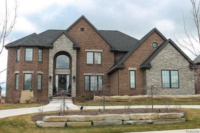 Rochester Hills, Rochester Single Family Home For Sale: 939 Majestic